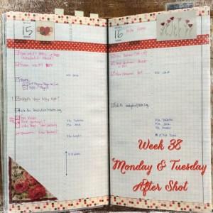 Week 38 Monday & Tuesday After Shot