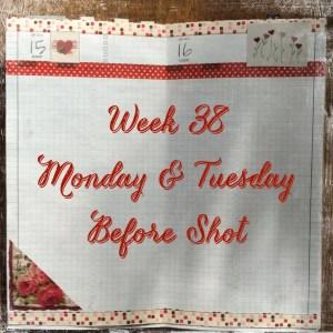 Week 38 Monday & Tuesday Before Shot