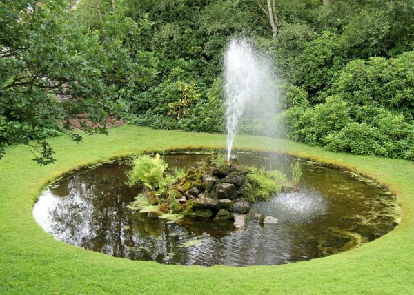 outdoor water fountain garden pond Outdoor Garden Ponds - How to Take Care of a Turtle
