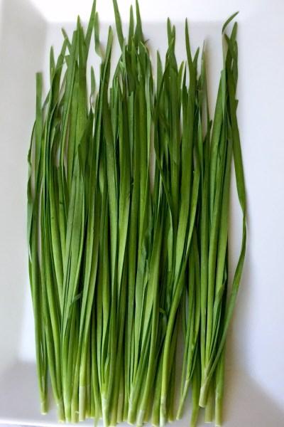 Ingredient Showcase: Nira (Garlic Chives)