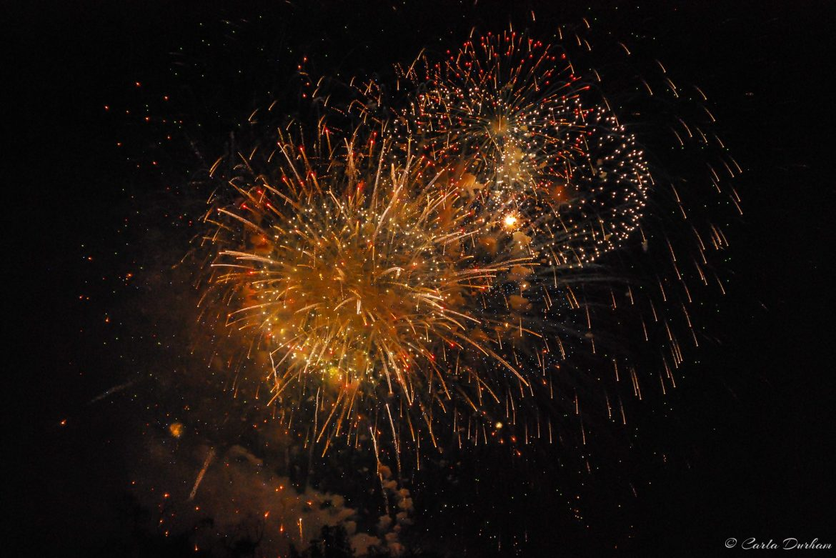 Fireworks in Washington on 4th of July - Photographer Carla Durham