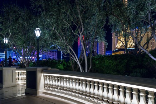 Outside of Bellagio Hotel and Casino in Las Vegas, Nevada - Photographer Carla Durham- 50 Cities and counting