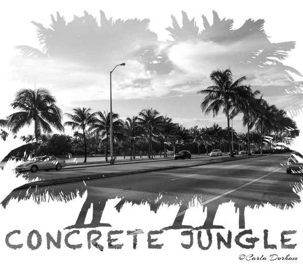 concrete-jungle-miami-beach-watermark