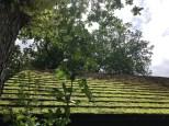 170618 Loch Lomond 2