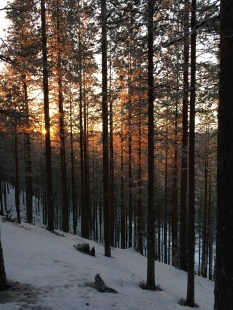 20151223 LAPLAND Trekking1_7