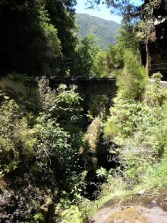 200507_Madeira 0807_1