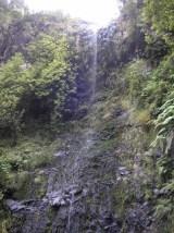 200507_Madeira 0811_1