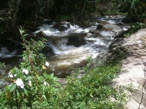 20101229Costa Rica1
