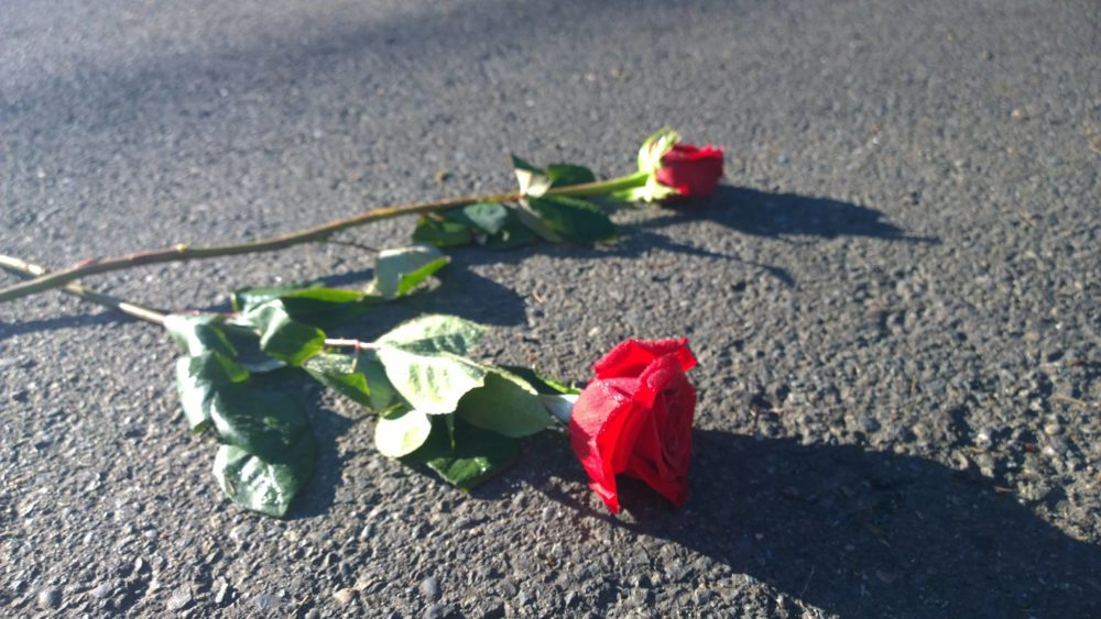 Two Roses on Concrete