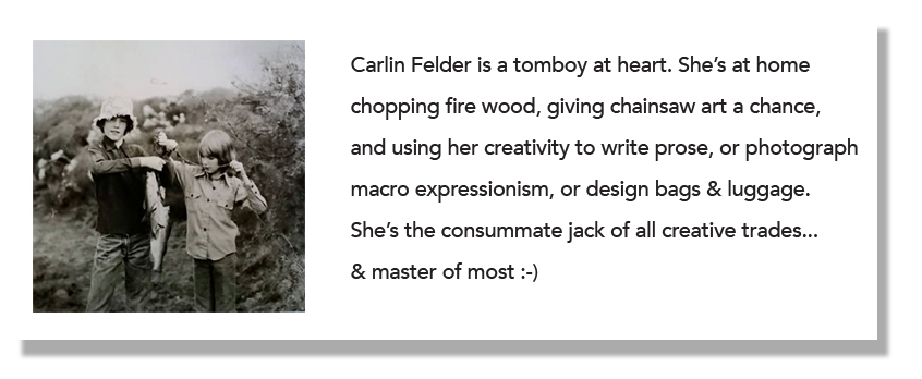 Carlin Felder Author Biography