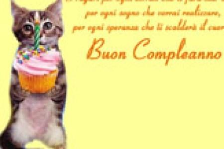 Gatto Tom Buon Compleanno –? –? Powermall