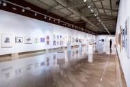 100_Artistas_Solidarios+2015_Arte_Democracia_08