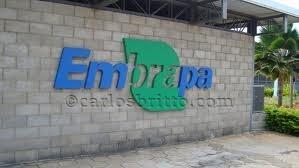 LOGO_Embrapa