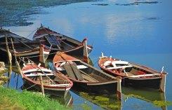 Barcas sobre el Arno