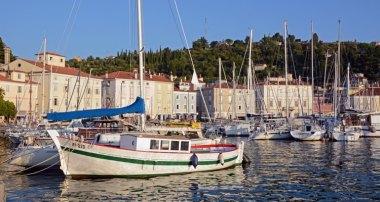 Puerto. Barcos y Paseo Marítimo