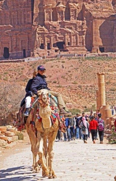 Camello por el Decumanusly al fondo las Tumbas Reales
