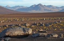 En el horizonte los Andes Bolivianos
