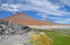 Volcanes Licancabur y Sairecabur desde la laguna Blanca