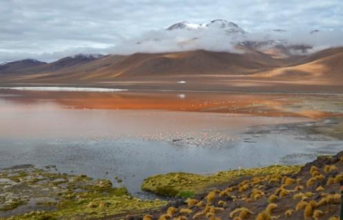 Laguna Colorada - La mayor de las lagunas visitadas