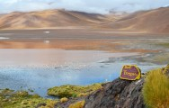 Vista del color característico de la laguna Colorada