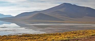 Salar de Chalviri - Reserva Nacional Eduardo Avaroa