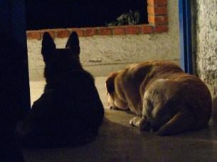 Lola y Paco esperándome