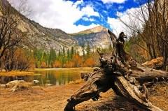 Stock photos: Nature & Landscape