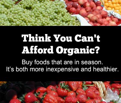 Buy foods that are in season