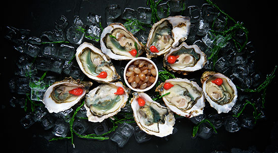seafood - oysters