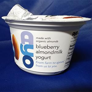 AYO blueberry almondmilk yogurt
