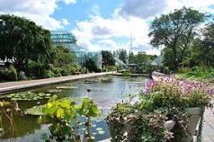 Jardín Botánico de Brooklyn