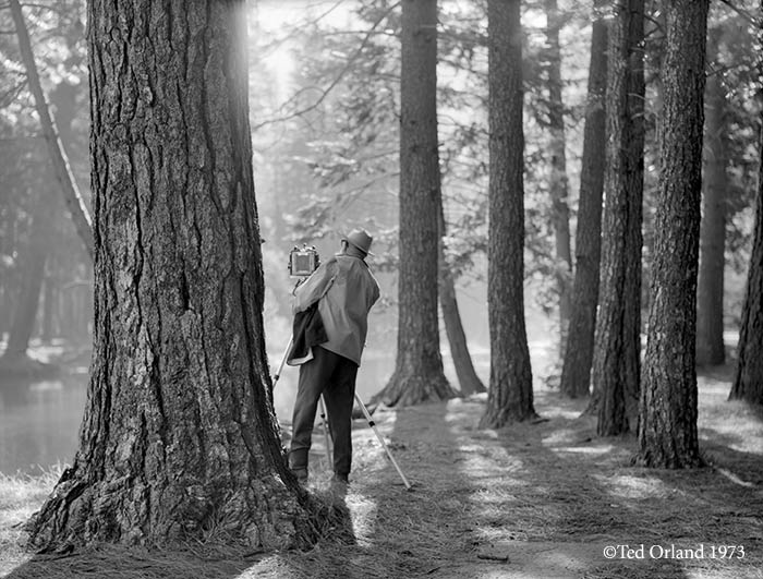 Ansel Adams Photographing Yosemite ©Ted Orland