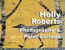 The Perfect Union: Photography and Paint Collage: Holly Roberts http://www.carmelvisualarts.com/holly-roberts-photography-collage-workshop/