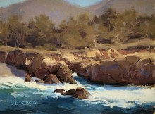 Kersey, Sun & Surf, Point Lobos
