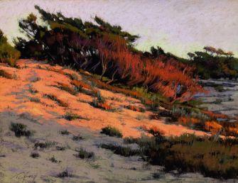 Orange Sunshine 16x20 by Terri Ford