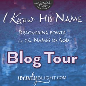 Wendys blog tour button