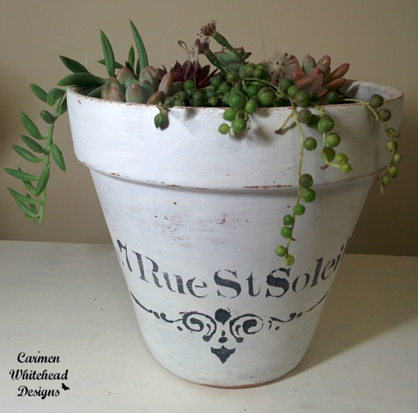 Updated Terra Cotta pot with chalky finish paint. Soft succulents added by www.carmenwhitehead.com
