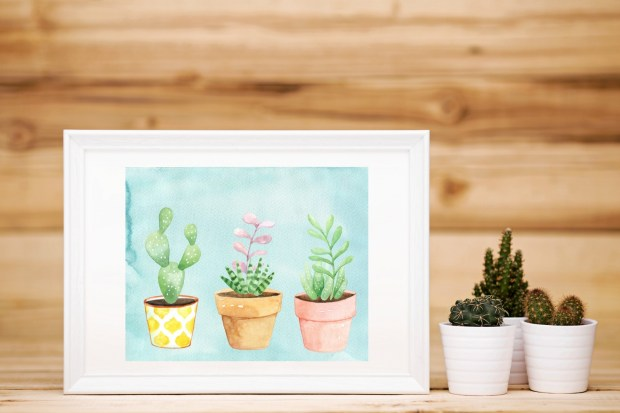 Succulent art prints created by Carmen Whitehead Designs