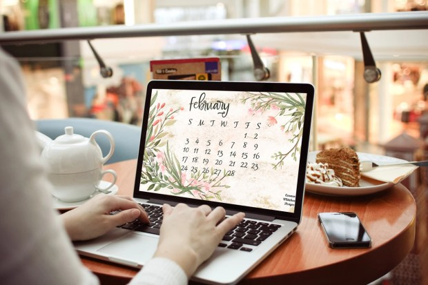 February 2019 Desktop and Mobile Calendar by Carmen Whitehead Designs