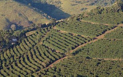 Fazenda Sertão