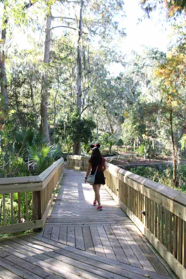 10 free things to do in Orlando