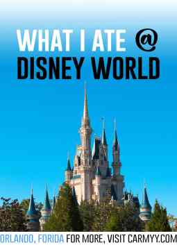 What I Ate: Disney Edition!
