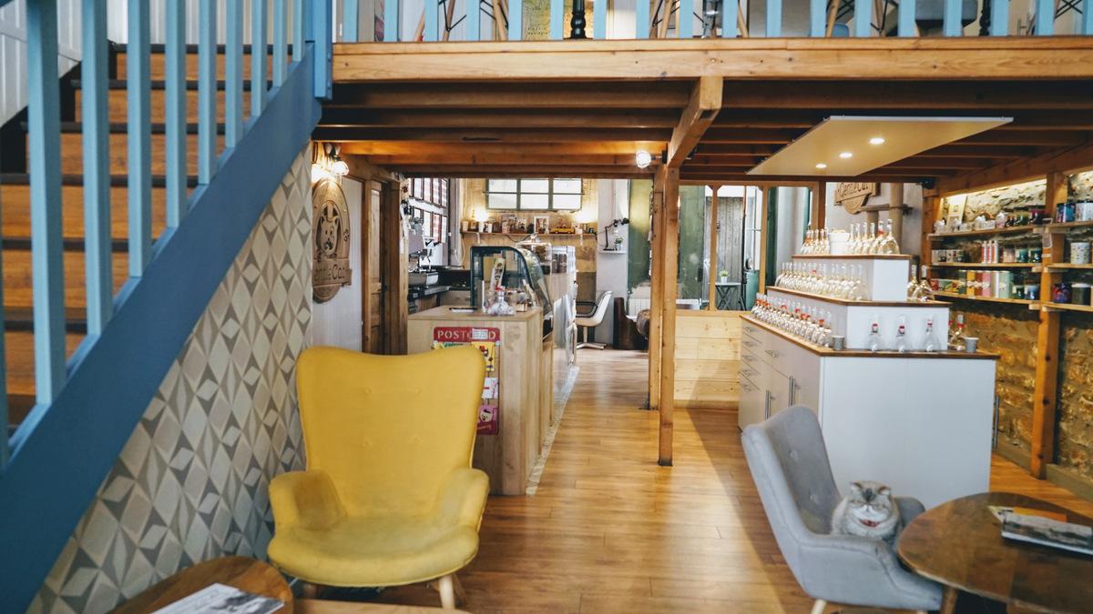Le comptoir du Gentlecat bar a chats a Lyon Perrache