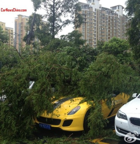 Ferrari 599 GTO got hit by a tree in Shanghai, China