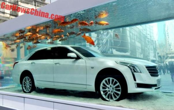 Cadillac CT6 in a Fish Tank in China