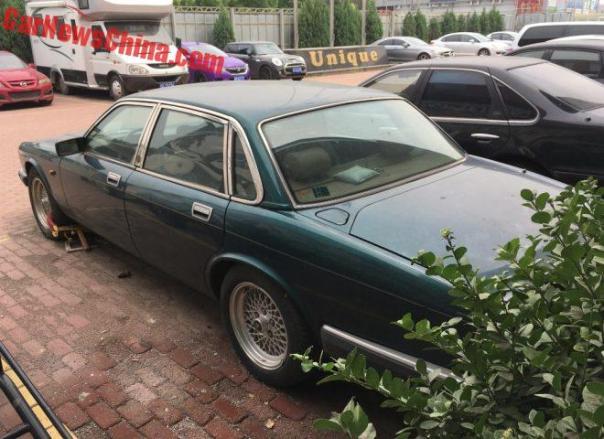 jaguar-green-bj-12