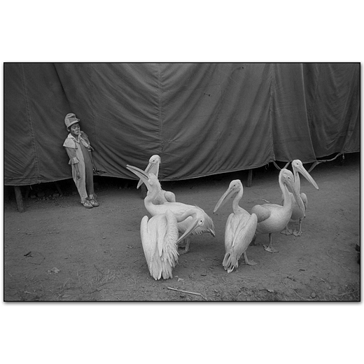 Mary Ellen Mark – Photography Inspiration