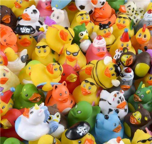 Mini Duck Assortment Carnival Prize