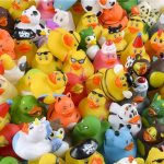Mini Duck Assortment Carnival Prize