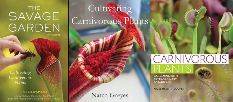Mis mejores recomendaciones para libros sobre plantas carnívoras.